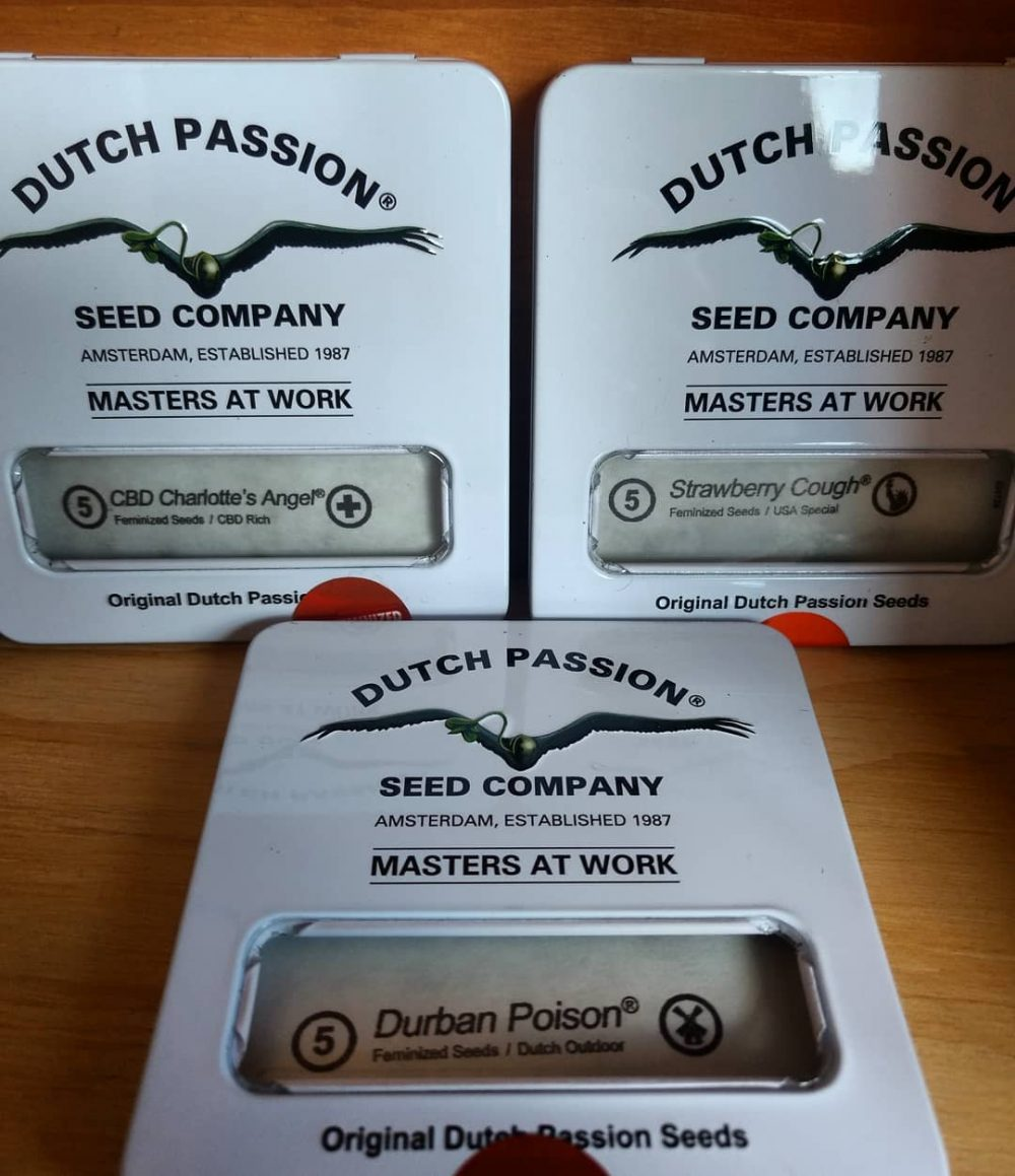 Dutch Passion Seeds from 420seeds.ca