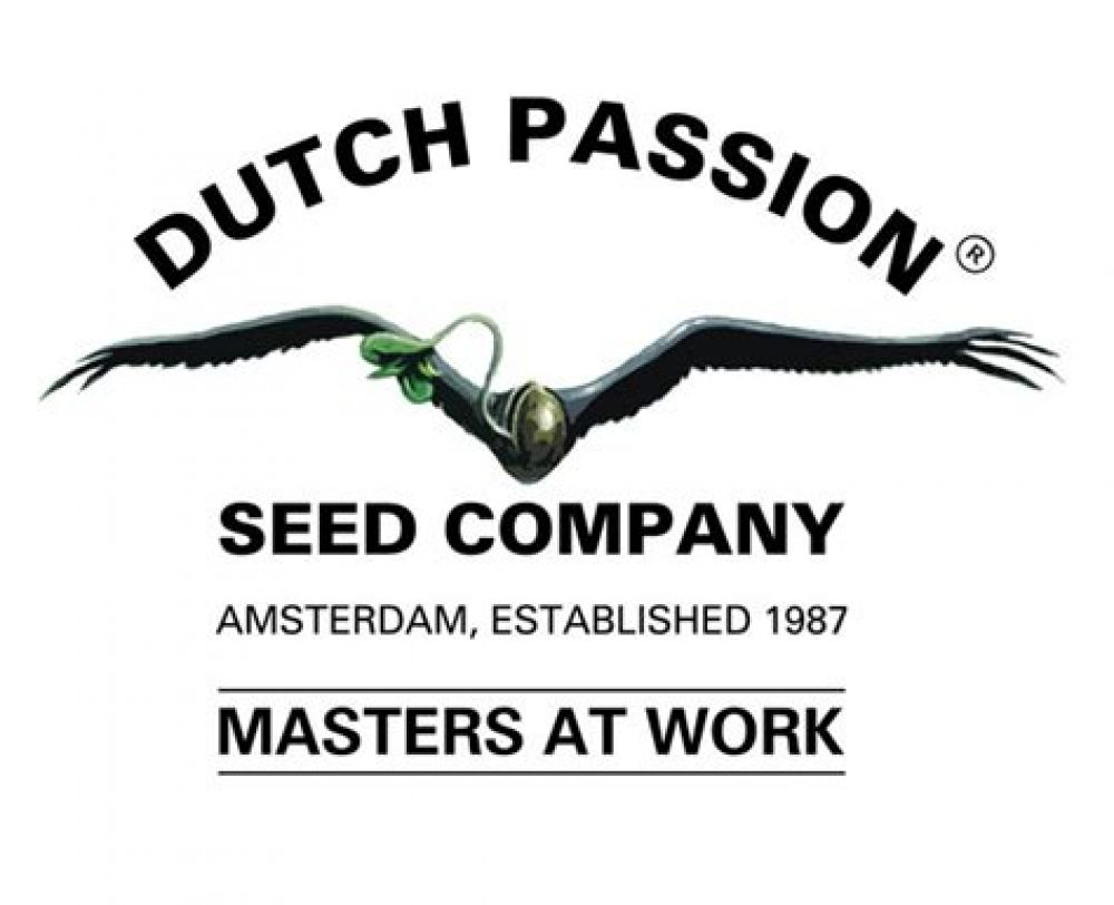 420 Seeds - Dutch Passion Seed Collection